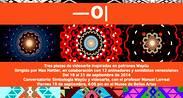 Videoarte basado en patrones Wayúu