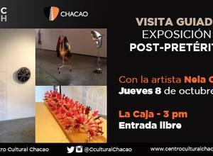 VISITA GUIADA: Exposición Post-Pretérito Con la artista Nela Ochoa