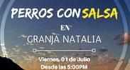 [After Office] Perros con Salsa en Granja Natalia