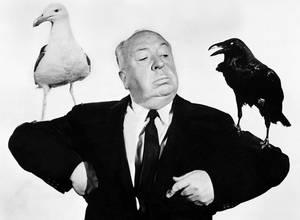 """La BBC planea hacer una serie de """"The Birds"""" de Hitchcock"""
