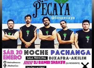 NOCHE DE LOS PECAYA