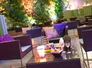 Entre Hojas Lounge