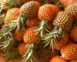 Jugo de piña mejora el sabor del semen