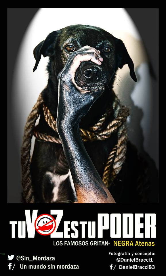 venezolanas perras amordazar