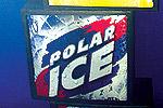 Polar ICE!